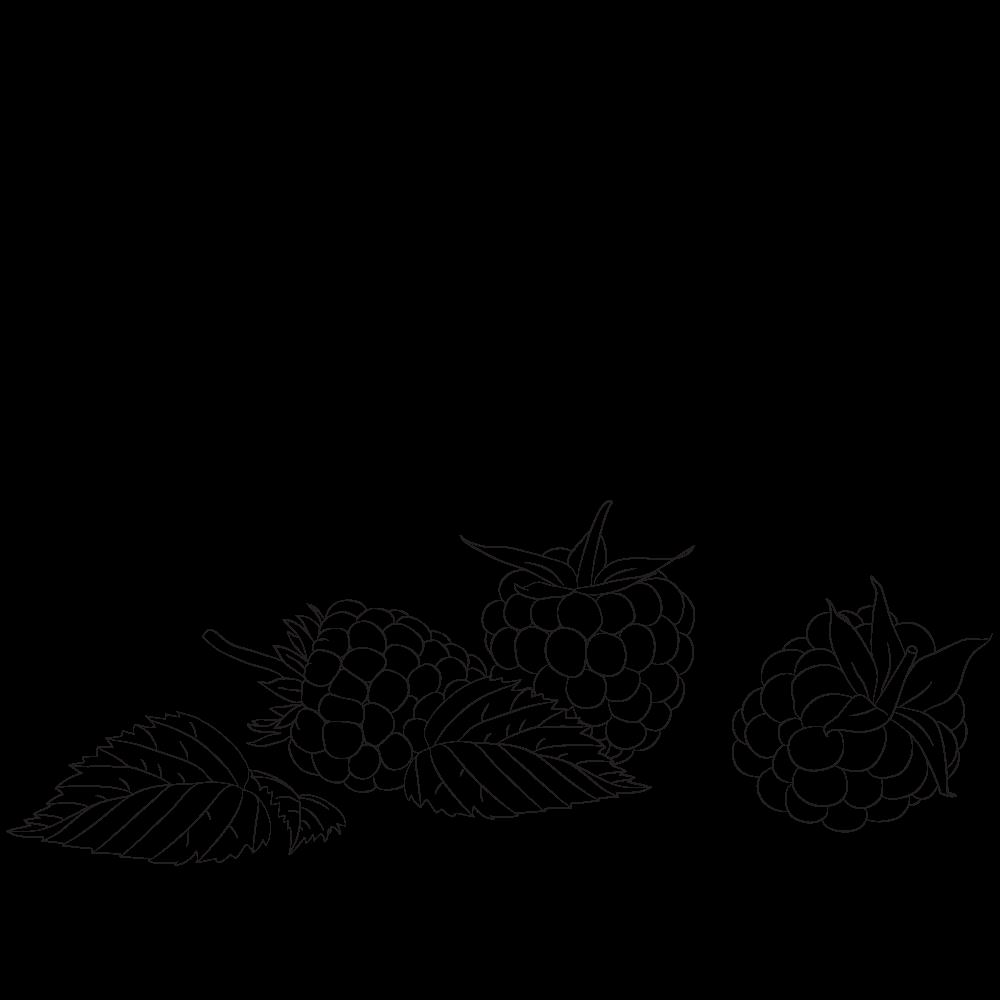 Huile de pépin de framboise bio et bon pour la peau